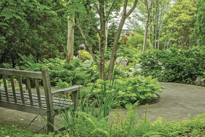Landscape Trades - Healing gardens, the power of nature