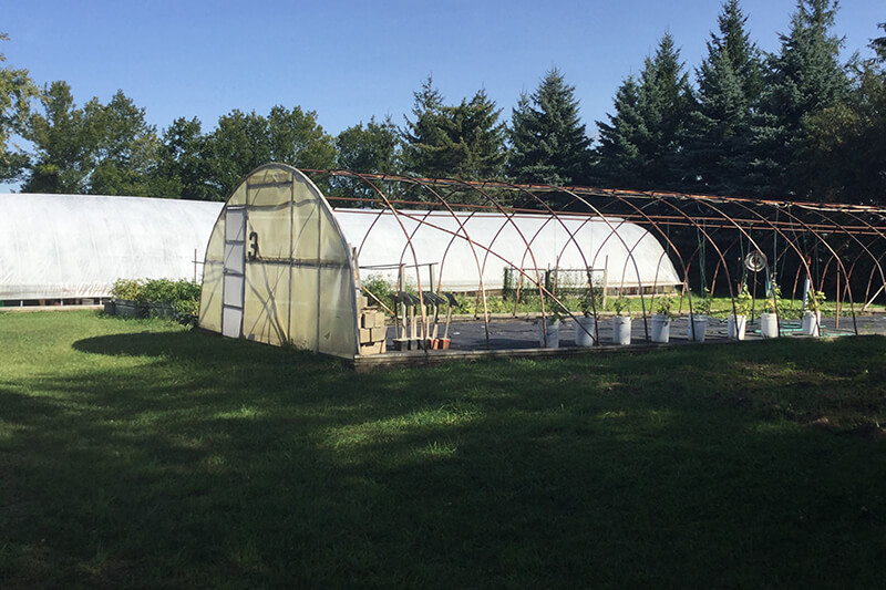 outdoor hoophouse for growing plants
